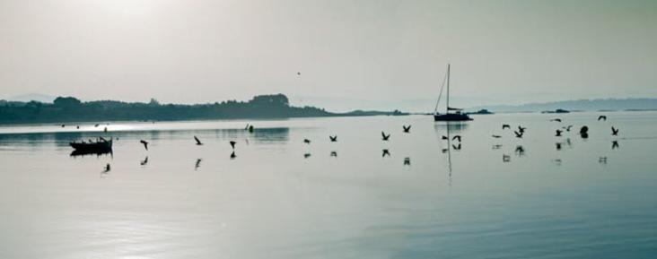 panoramica-amanecer